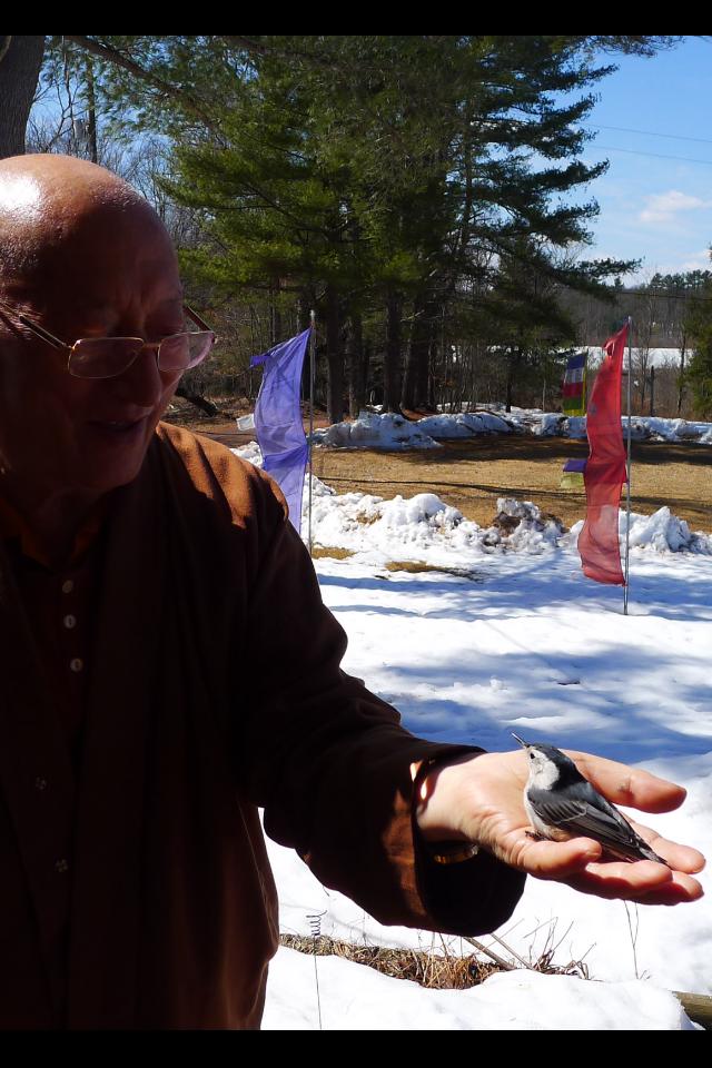 Khenchen Rinpoche with bird