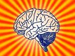 brain_150
