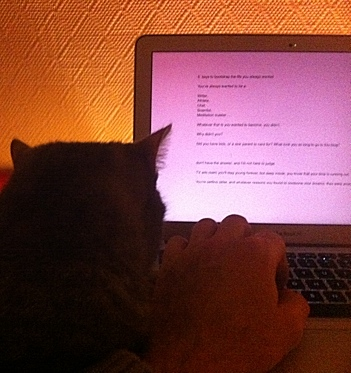 kitty-watching me-work-2013-01-09 04.56.05